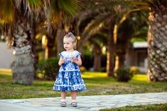 Retrato de una muchacha en un vestido azul en un fondo de palmeras fotografía de archivo libre de regalías