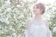Retrato de una muchacha feliz apacible dulce hermosa en un vestido beige con un peinado hermoso del maquillaje del gabinete de se Fotos de archivo