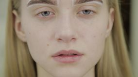 Retrato de una muchacha hermosa con las cejas enmarcadas para colorear en un salón de belleza almacen de video