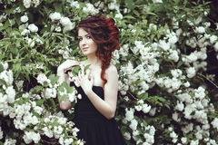 Retrato de una muchacha hermosa en un vestido negro que presenta cerca de un arbusto con las flores blancas Fotografía de archivo