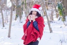 Retrato de una muchacha sonriente hermosa en el sombrero de santa en bosque del invierno Imagenes de archivo