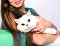 Retrato de una muchacha sonriente que sienta y que abraza el gato Imagenes de archivo