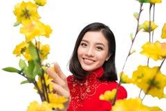 Retrato de una mujer asiática hermosa en coste tradicional del festival Foto de archivo libre de regalías