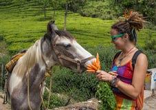 Retrato de una mujer bastante joven con el caballo Imagen de archivo libre de regalías