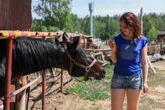 Retrato de una mujer bastante joven con un caballo del browne Fotos de archivo