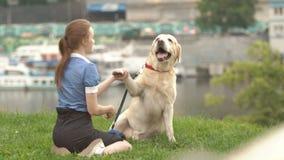 Retrato de una mujer con su perro hermoso que miente al aire libre almacen de metraje de vídeo