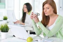 Retrato de una mujer de negocios agradable con un ordenador portátil Foto de archivo