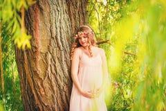 Retrato de una mujer embarazada joven hermosa Fotos de archivo