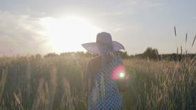 Retrato de una mujer feliz en un vestido y un sombrero ligeros La muchacha camina en el campo con las plantas del cereal en la pu metrajes