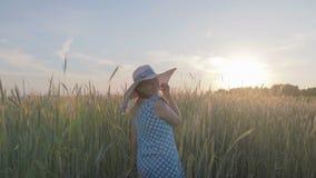Retrato de una mujer feliz en un vestido y un sombrero ligeros La muchacha camina en el campo con las plantas del cereal en la pu almacen de metraje de vídeo