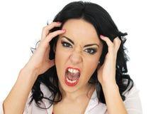 Retrato de una mujer hispánica joven frustrada enojada que grita y que grita Fotos de archivo libres de regalías