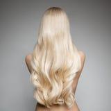 Retrato de una mujer rubia joven hermosa con el pelo ondulado largo Foto de archivo