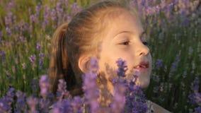 Retrato de una niña bonita que se sienta en los arbustos de la lavanda almacen de metraje de vídeo