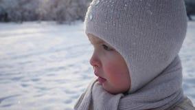 Retrato de una niña que se coloca en parque del invierno almacen de video