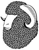 Retrato de una oveja merina. Fotos de archivo libres de regalías