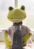 Retrato de una rana Fotografía de archivo libre de regalías