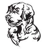 Retrato decorativo del ejemplo del vector del golden retriever del perro ilustración del vector
