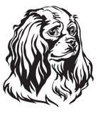 Retrato decorativo del vector arrogante de rey Charles Spaniel del perro ilustración del vector