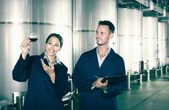 Retrato del adulto dos expertos que examinan el vino Imagen de archivo
