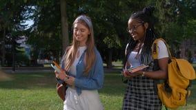 Retrato del aire libre de dos amigos multinacionales femeninos Las muchachas caminan en el parque en el verano Forma de vida del  almacen de video