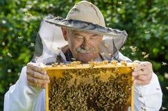 Retrato del apicultor con el panal Fotografía de archivo libre de regalías