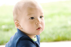 Retrato del bebé americano coreano lindo   Imagenes de archivo