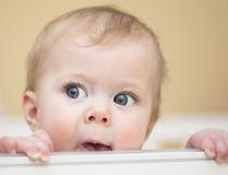 Retrato del bebé de 7 meses. Fotos de archivo libres de regalías