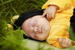 Retrato del bebé vestido como abeja Fotos de archivo