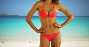 Retrato del bikini que lleva de la mujer negra en una playa del Caribe soleada Foto de archivo