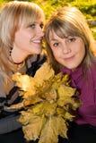 Retrato del blonde de la belleza de dos jóvenes fotos de archivo libres de regalías