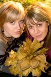 Retrato del blonde joven dos imágenes de archivo libres de regalías
