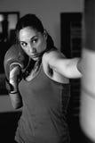 Retrato del boxeador de sexo femenino joven que lucha en guantes de boxeo fotografía de archivo libre de regalías