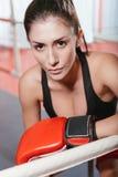 Retrato del boxeador de sexo femenino magnífico Fotografía de archivo