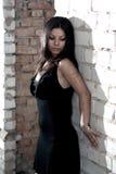 Retrato del brunette Fotografía de archivo libre de regalías