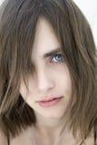 Retrato del brunette hermoso joven Fotografía de archivo libre de regalías