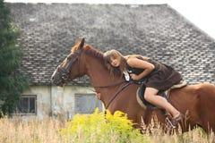 Retrato del caballo de la chica joven y de la castaña cerca del granero Imagen de archivo