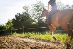 Retrato del caballo de montar a caballo de la mujer joven en campo Imagen de archivo libre de regalías