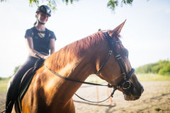 Retrato del caballo de montar a caballo de la mujer joven en campo Fotografía de archivo