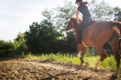 Retrato del caballo de montar a caballo de la mujer joven en campo Fotos de archivo