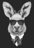 Retrato del canguro en traje Fotografía de archivo
