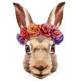 Retrato del conejo con la guirnalda principal floral libre illustration