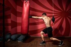 Retrato del entrenamiento masculino del boxeador con los guantes y descamisado Entrenamiento del boxeo Imagen de archivo