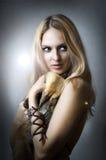 Retrato del estudio del modelo femenino atractivo joven Foto de archivo libre de regalías