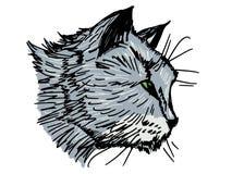 Retrato del gato Foto de archivo