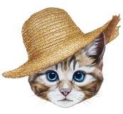 Retrato del gato con el sombrero de paja Fotografía de archivo libre de regalías