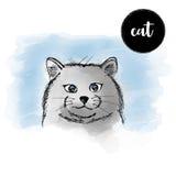 Retrato del gato de la acuarela Fotografía de archivo libre de regalías