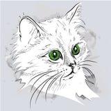 Retrato del gato del drenaje de la mano Ilustración del vector Imagen de archivo libre de regalías
