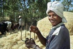 Retrato del granjero en la trilla de la cosecha de grano Fotografía de archivo