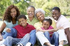 Retrato del grupo de la familia extensa en parque Fotografía de archivo libre de regalías