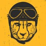 Retrato del guepardo con el casco del vintage stock de ilustración